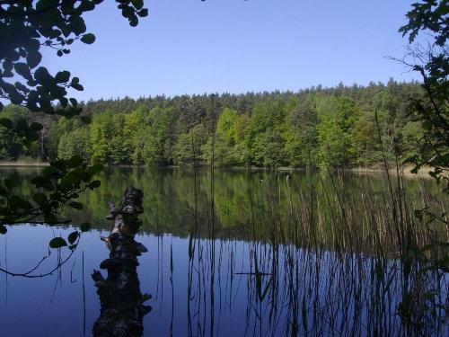 Carwitz am Luzin im Sommer