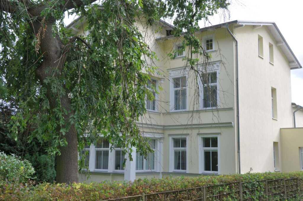 Villa an der Waldstraße, Wohnung mit Ausblick