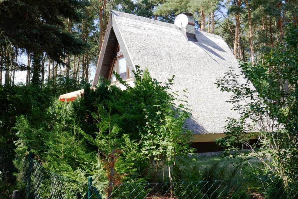 Reetdachhaus in Quilitz auf Usedom, Reetdachhaus Q