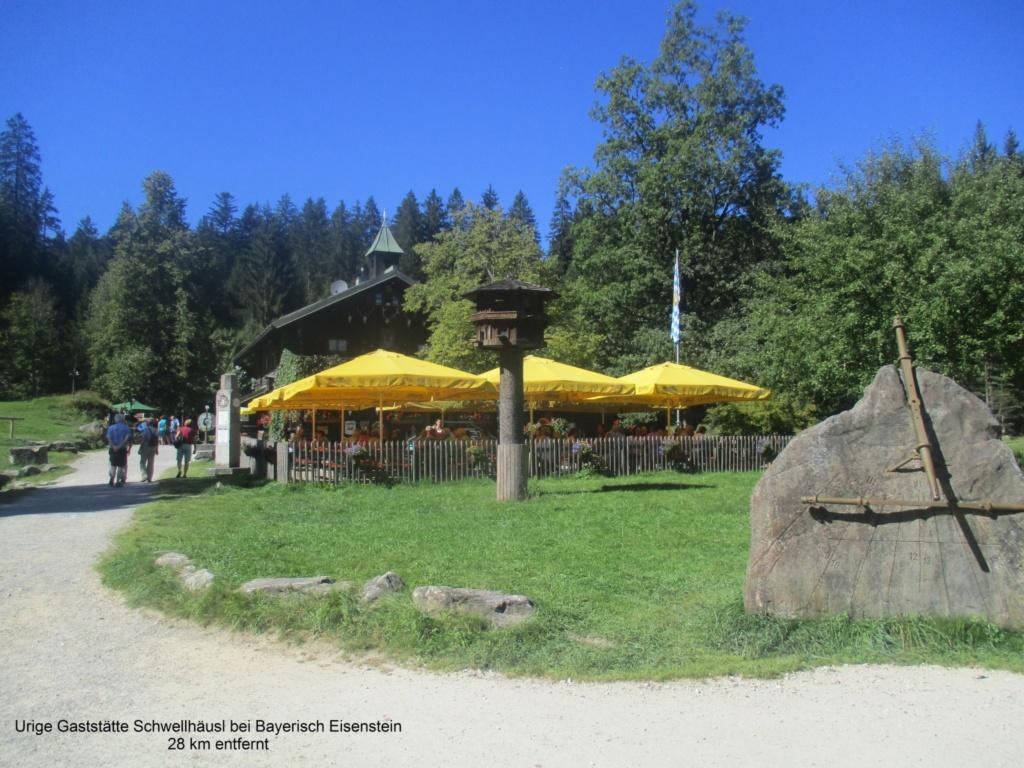 Waldferiendorf Regen, Ferienhaus G