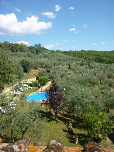 Blick von Balkon auf Pool und Garten