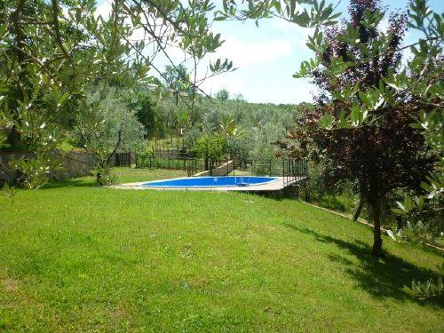 Der Pool und Gartenbereich