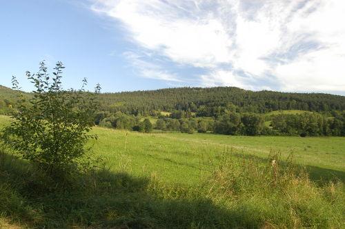 Landschaft am Reinsberger Dorf