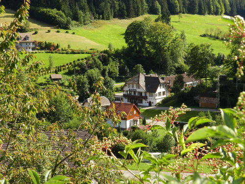 Ferienhaus f�r Gruppen im Schwarzwald