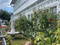 Villa Waldrose****, Fewo 5 in Binz (Ostseebad) - kleines Detailbild