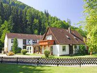 Ferienhaus am Kunzenbach und Pension Birgit, Ferienwohnung 1 in Zorge - kleines Detailbild