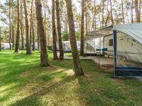 Urlaub im Wohnwagen - mitten im Wald, Wohnwagen 12 in Lütow - Usedom - kleines Detailbild