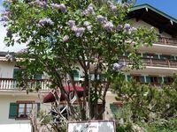 Haus Schußmann, Alpbach in Tegernsee - kleines Detailbild