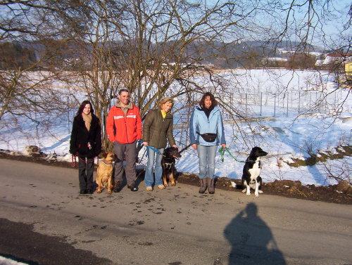 Hundeschule mit Tierpsychologe Di Palma