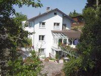 Haus Sonneneck, Appartement in Bad K�nig - kleines Detailbild