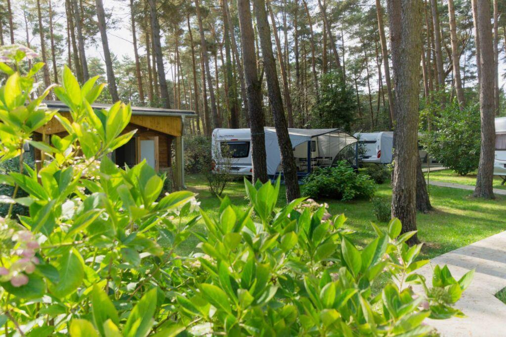 Urlaub im Wohnwagen - mitten im Wald, Wohnwagen 03
