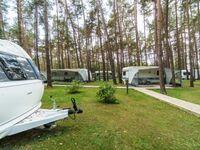 Urlaub im Wohnwagen - mitten im Wald, Wohnwagen 06 in Lütow - Usedom - kleines Detailbild