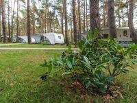 Urlaub im Wohnwagen - mitten im Wald, Wohnwagen 08 in Lütow - Usedom - kleines Detailbild