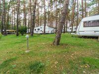 Urlaub im Wohnwagen - mitten im Wald, Wohnwagen 16 in Lütow - Usedom - kleines Detailbild