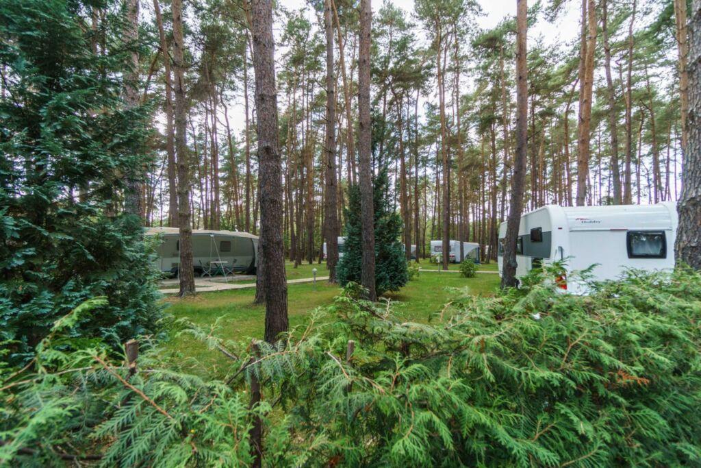 Urlaub im Wohnwagen - mitten im Wald, Wohnwagen 16