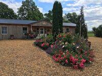 Ferienresort Möwenort, Bungalow 06 in Lütow - Usedom - kleines Detailbild