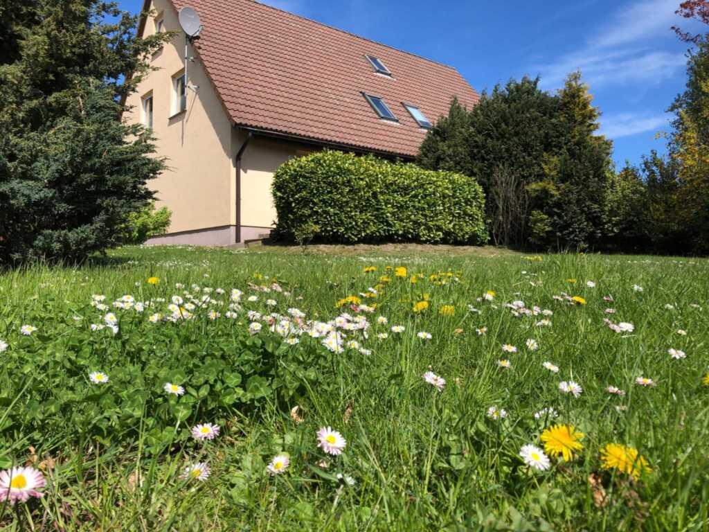 HAGEN - Landferienhaus Sonnenblick - ASM, Ferienha