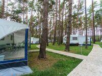Urlaub im Wohnwagen - mitten im Wald, Wohnwagen 02 in Lütow - Usedom - kleines Detailbild