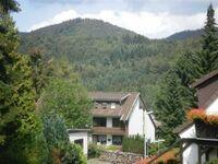 Ferienwohnungen 'Katja', 3-Raum-Wohnung in Bad Sachsa - kleines Detailbild