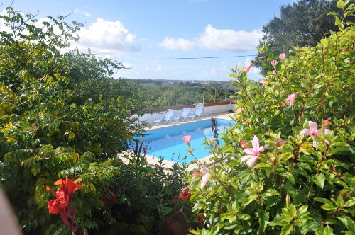 Schwimmbad 5 m x 10 m