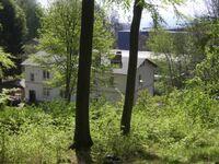 Rügen-Fewo 296, Fewo in Sassnitz auf Rügen - kleines Detailbild