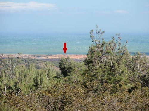 Ausblick aus dem Naturschutzgebiet
