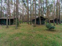Urlaub im Bungalow - mitten im Wald, Bungalow Nr. 20 in L�tow - Usedom - kleines Detailbild
