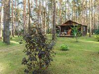 Urlaub im Bungalow - mitten im Wald, Bungalow Nr. 18 in Lütow - Usedom - kleines Detailbild