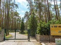 Urlaub im Bungalow - mitten im Wald, Bungalow Nr. 14 in Lütow - Usedom - kleines Detailbild