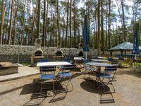 Urlaub im Bungalow - mitten im Wald, Bungalow Nr. 15 in Lütow - Usedom - kleines Detailbild