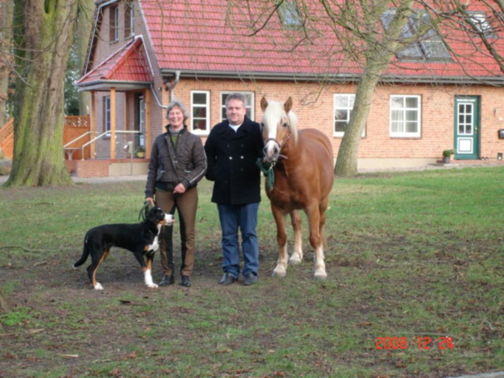 Ferienhof Altona, Pferdestall