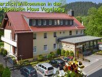 Bergpension Haus Vogelsang, Wohnmobilstellplatz Nr. 1 in Wildemann - kleines Detailbild
