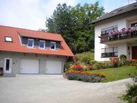Ferienhof Knöll, Ferienwohnung Bergblick in Lindenfels-Winterkasten - kleines Detailbild