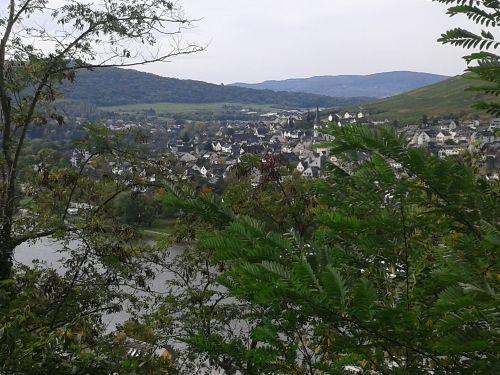 Blick auf den Stadtteil Kues
