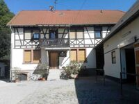Ferienhaus Pferdehof und Wanderreitstation Dörsam in Mörlenbach-Bettenbach - kleines Detailbild