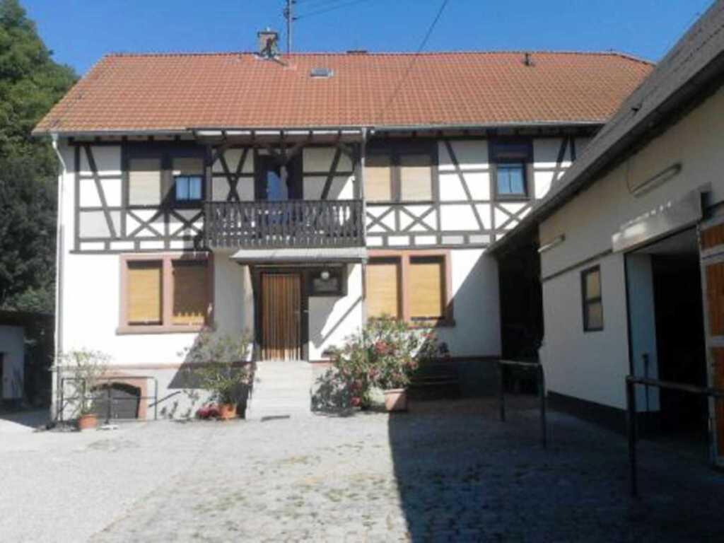 Pferdehof und Wanderreitstation D�rsam, Ferienhaus