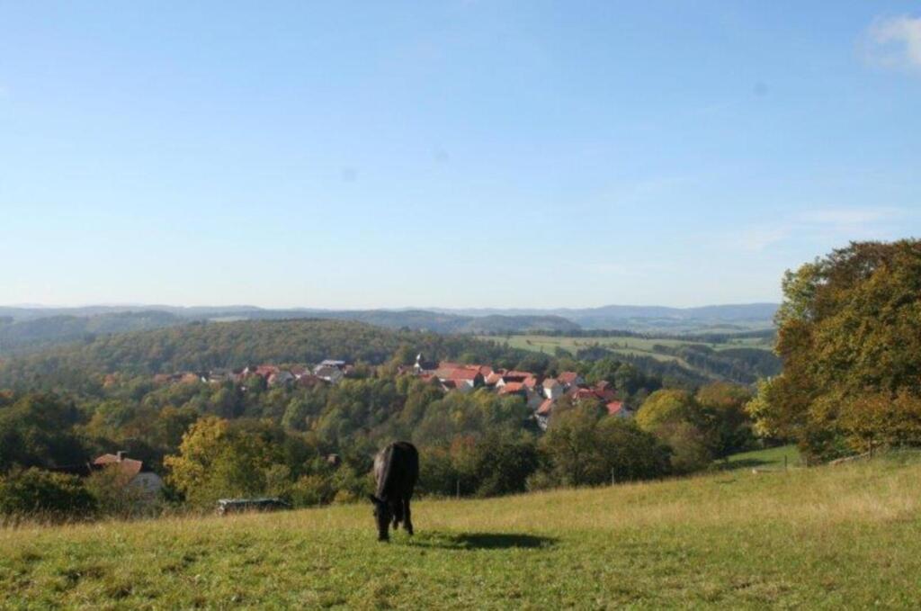 Ferienwohnung Friedewald