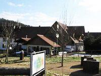 Daumsmühle, Waldblick in Mossautal-Unter-Mossau - kleines Detailbild
