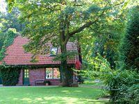 Ferienhaus Waren SEE 7161, SEE 7161 in Waren (Müritz) - kleines Detailbild