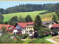 BE-Hotel-Gasthof 'Zur Krone', Dreibettzimmer in Beerfelden-Gammelsbach - kleines Detailbild