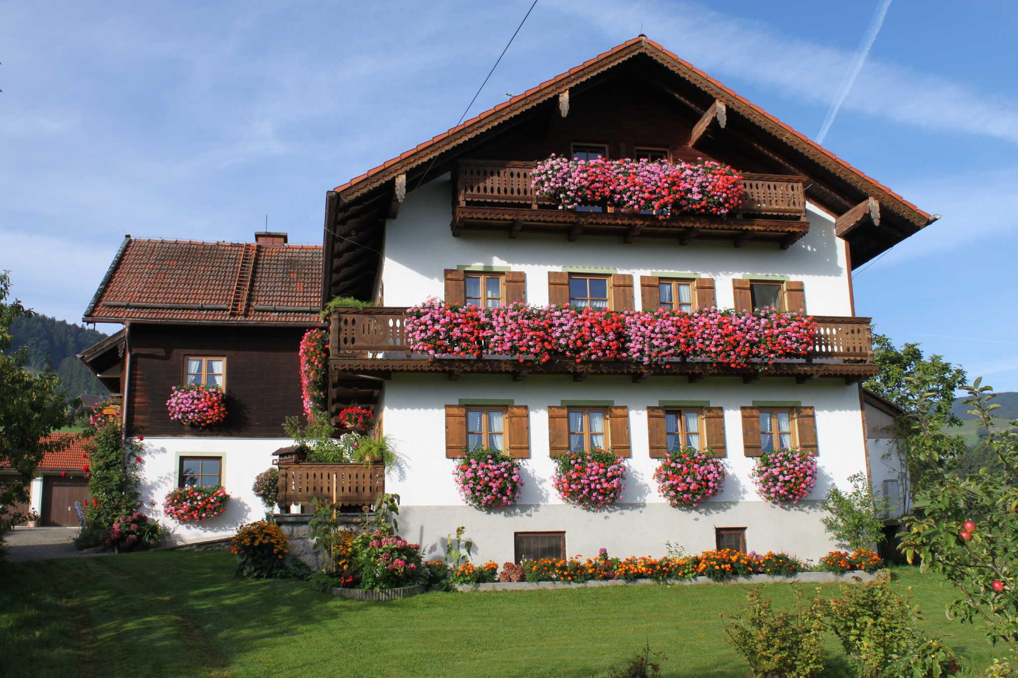 Unser Haus in voller Blütenpracht