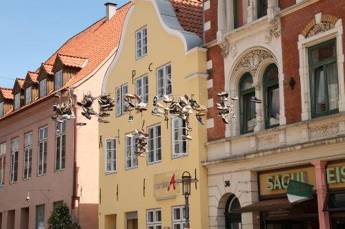 Wassersport in der Flensburger Förde