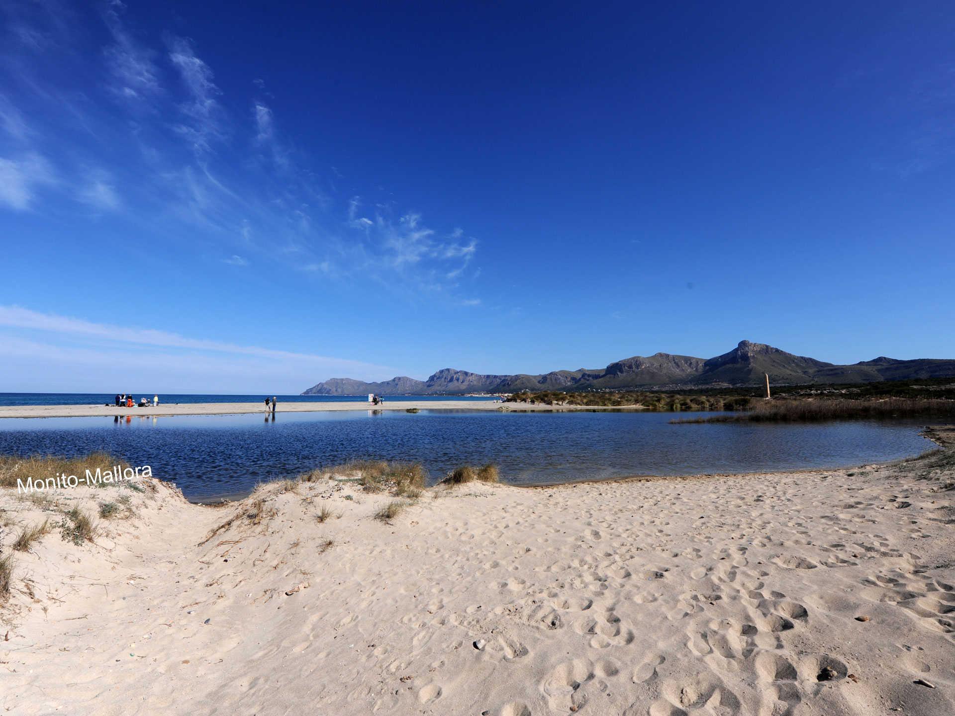 Strand in der Mitte von Son Serra