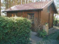 Ferienhaus 'Waldsiedlung' in Kölpinsee - Usedom - kleines Detailbild
