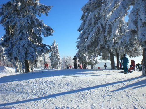 Wintertraum am Almberg