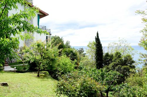 Sicht des Hauses vom Garten