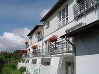 Katharina  Whg 105 2 Raum mit Balkon, HK 2 Raum 105 in Lauterbach - kleines Detailbild