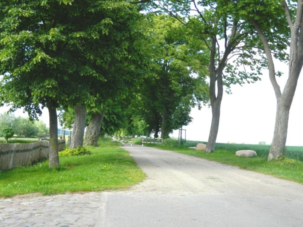 Pension Müritzwiese, *Ferienwohnung 3