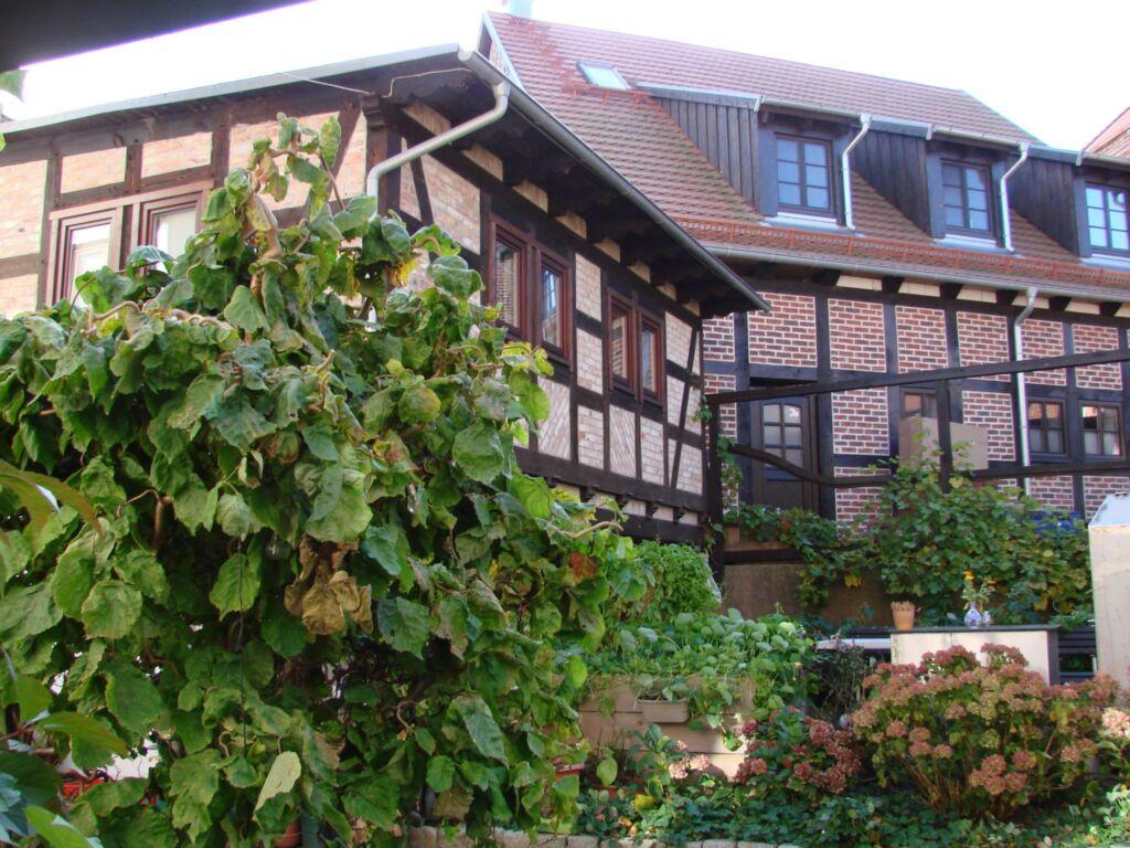 Ferienhaus Sontag, Ferienhaus
