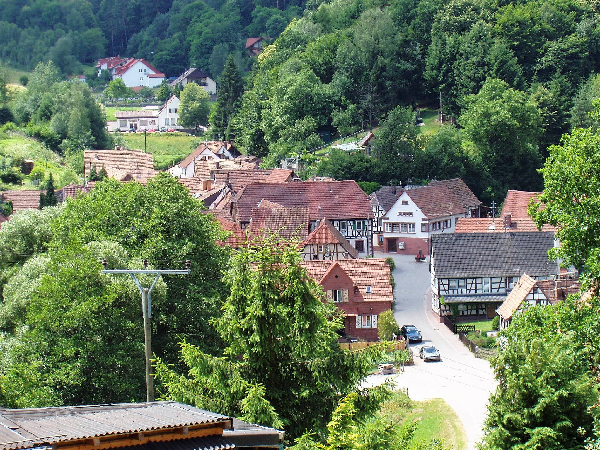 Natur pur mit typischen Felsen der Pfalz